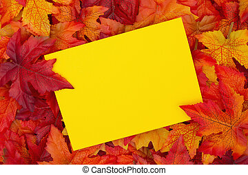 Fall Season Greeting , Some fall leaves with a blank yellow greeting card with copy-space for your message