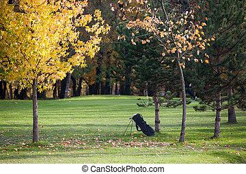 Fall season on a golf course