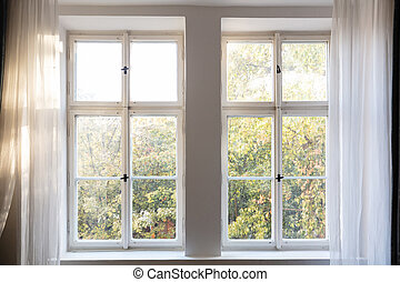 Fall season. Trees with autumn leaves out of two closed white wooden windows.