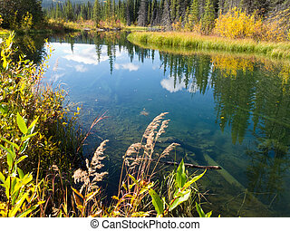 Fall sky mirrored on calm clear taiga wetland pond - Sky...