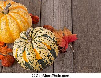Fall Squash