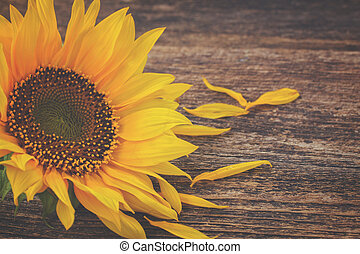 fall sunflowers on wood