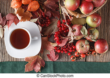 Fall symbols on rustic wooden background