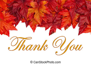 Fall time Thank You message with red and orange fall leaves
