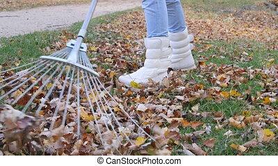 Fall Yard Work