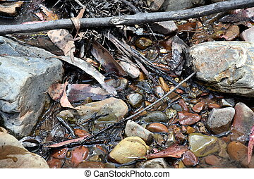 Fallen leafs and Underwater pebbles wallpaper. Water Through Rocks background and texture.