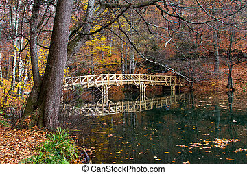 Fallen Leaves with Bridge on Lake