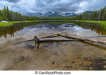 Fallen trees in Bierstadt Lake with view of The Continental Divide Taylor, Hallett Peak, Andrews, Tyndoll Glacier, Flattop Mountain Rockies Colorado