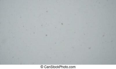 fallender , langsam, schneeflocken