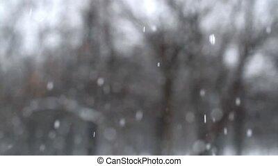 fallender , schnee