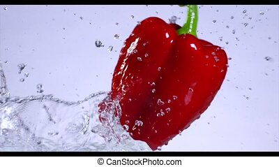 Falling and splashing pepper on water. Slow motion.