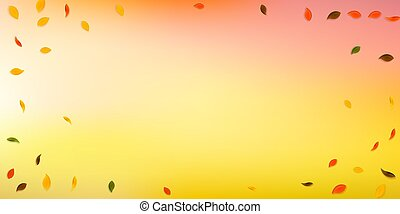 Falling autumn leaves. Red, yellow, green, brown random ...