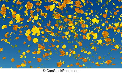 Falling autumn leaves slow-motion background