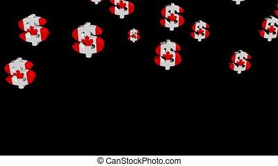 falling Canadian dollar animation