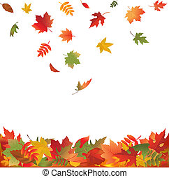 Falling Fall Leaves - Autumn Falling Leaves, Isolated On...