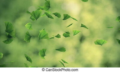 Falling gingko foliage in the wind - looped animation