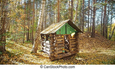falling leaves in the autumn forest, a small house