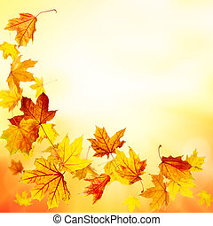 Falling maple leaves background