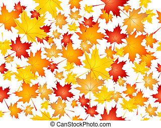 Falling maple leaves - Background of falling Maple leaves