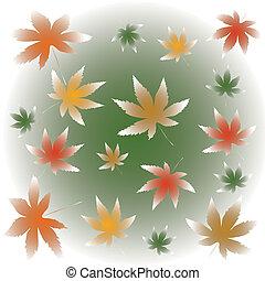falling maple leaves