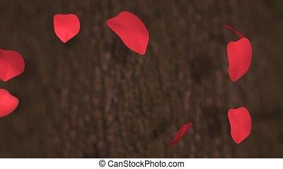 Falling petals - Red rose petals.