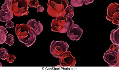 Falling pink and red roses with alpha channel