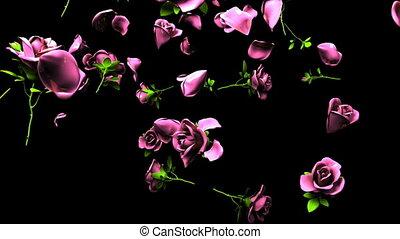 Falling pink roses on black background. 3DCG render...