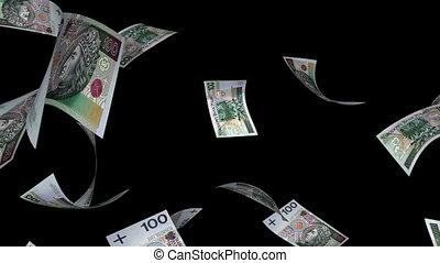 Falling Polish Zlotys (Loop -Matte) - Falling 100 PLN bills....