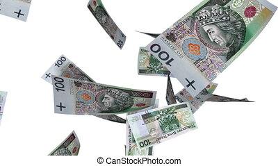 Falling Polish Zlotys (Loop White) - Falling 100 PLN bills....