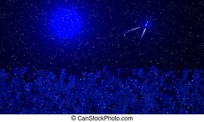 Falling rain and forest, stars