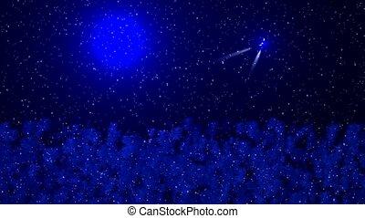 Falling rain and forest,stars - Falling rain and...