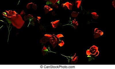 Falling Red Roses On Black Background. 3DCG render...