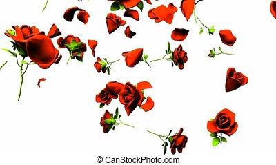 Falling Red Roses On White Background. 3DCG render...