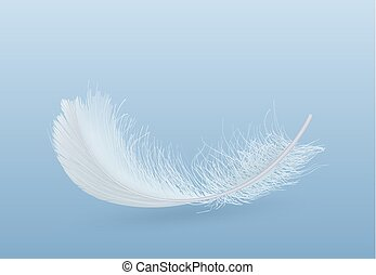 Falling single white feather realistic vector