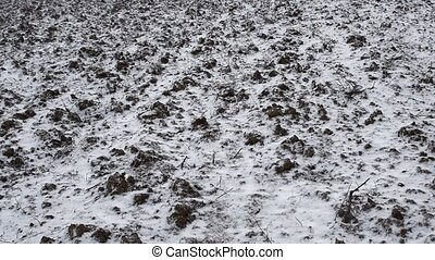 Falling snow on a background of plowed soil in the field. Winter has come