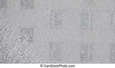 Falling snow on the background