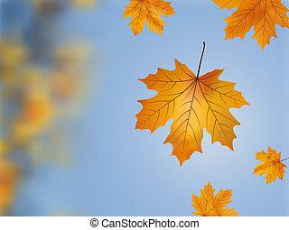 Falling wilted leaf.