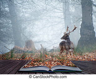 Landscape of forest in fog during Winter Autumn Fall with fallow deer roamingin pages of magical book