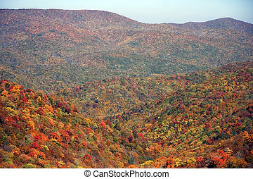 Falls Colors in Tennessee - View from Cherohala Scenic...