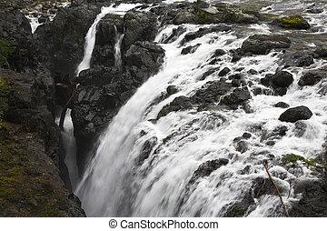 Falls on island Vancouver - Englishman River Falls