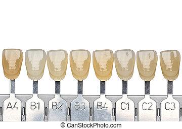 falso, dentadura, amostras cor, dentes, implante, production...