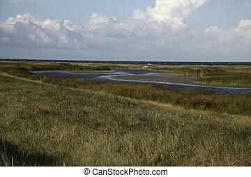 Falsterbo peninsula, Sweden, coastal area