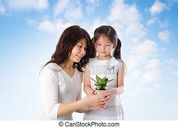família asian, cuidando, planta