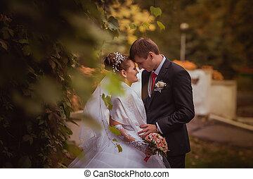 família, casório, jovem, newlyweds