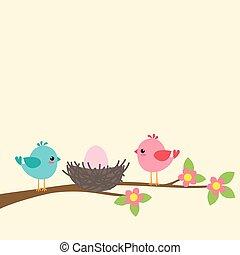 família, de, pássaros
