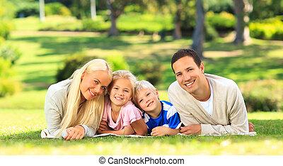 família, deitando-se, parque
