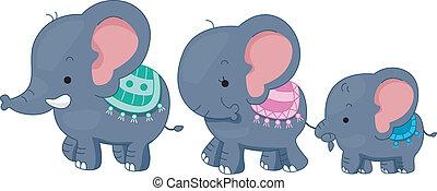 família, elefante
