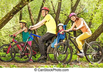 família, ensolarado, bicicletas, floresta, ativo, montando