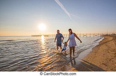 família feliz, praia, ligado, pôr do sol
