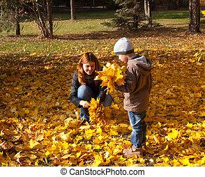 família feliz, tendo divertimento, ao ar livre, parque